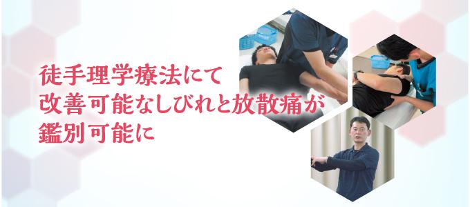 徒手理学療法にて改善可能なしびれと放散痛が鑑別可能に